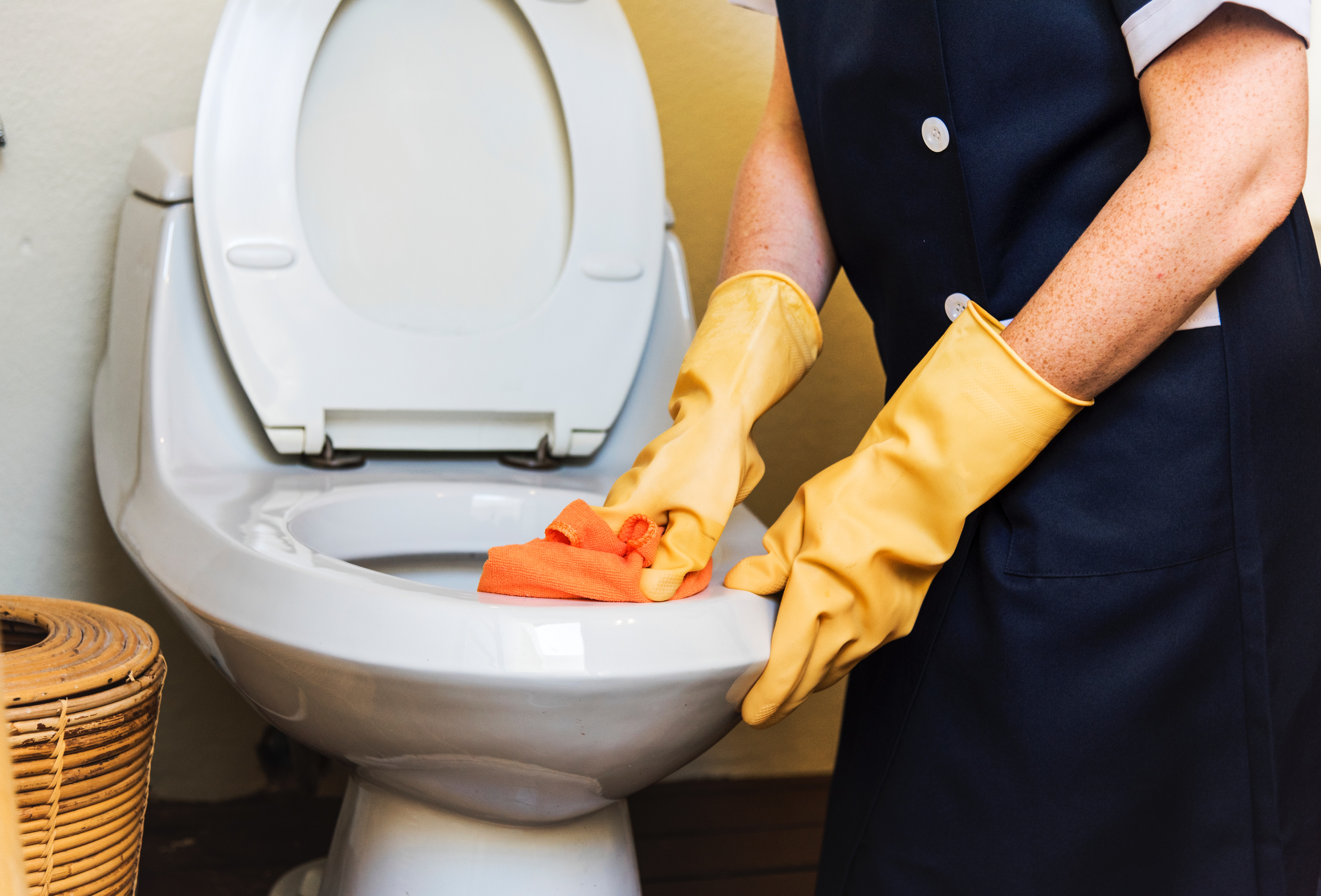 Tips for Cleaning the Toilet Bowl